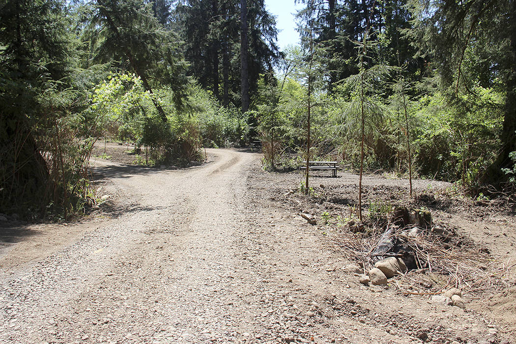 After the Chamber meeting, Whorton hosted a tour of the new Campground just off Hwy 101 near the Sol Duc Bridge. The bend in the Sol Duc borders the campground area. Each camping site has a picnic table. Photo Christi Baron